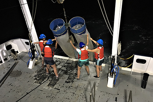 Working the overnight shift, Grace Koziol, Brianna Michaud, Nicole Seiden, and Abby Blackburn (left to right) control the Bongo nets as they're hoisted aboard the R/V Hogarth.